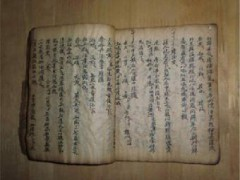 """""""不死癌症之牛皮癣(银屑病)"""" (17播放)"""