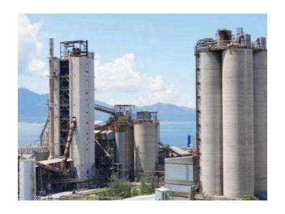 水泥厂脱硫脱硝催化剂
