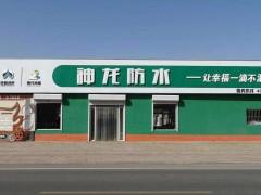 河间神龙防水丙纶布生产厂家