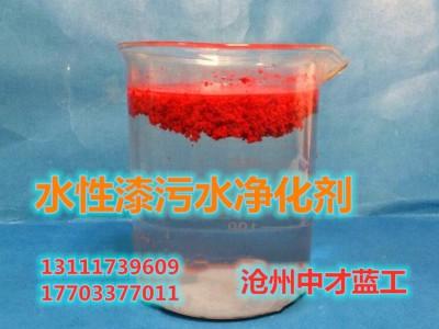 喷涂漆循环水净化剂